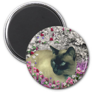 Stella in Flowers I – Chocolate Cream Siamese Cat Magnet