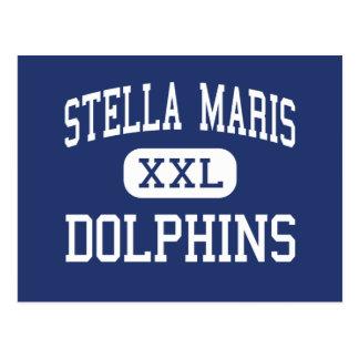 Stella Maris - delfínes - alto - parque de Rockawa Postales