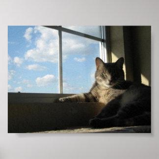 Stella por el poster de la ventana