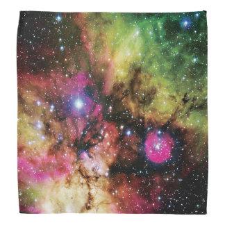 Stellar Cluster NGC 2467 Bandana
