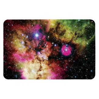 Stellar Cluster NGC 2467 Rectangular Photo Magnet