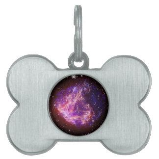 Stellar Debris in the Large Magellanic Cloud Pet Tags