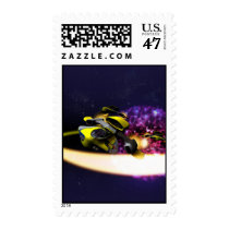 Stellar Drift Postage