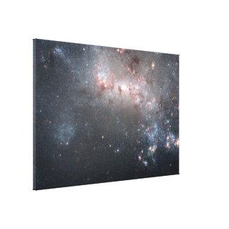Stellar Fireworks Are Ablaze in Galaxy NGC 4449 Canvas Print