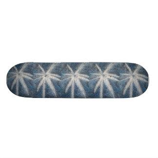 stellar flight skate board decks