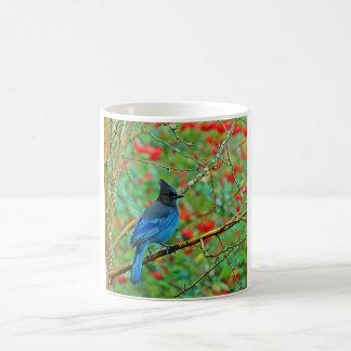 Stellar Jay Coffee Mug