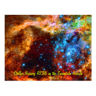 Stellar Nursery R136 in the Tarantula Nebula Postcard