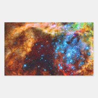 Stellar Nursery R136 in the Tarantula Nebula Rectangle Sticker