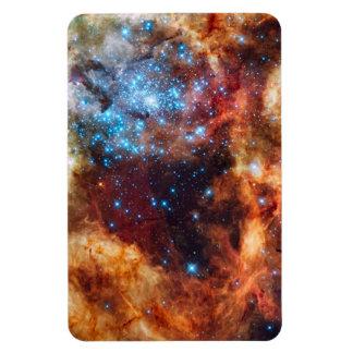 Stellar Nursery R136 Tarantula Nebula NASA Photo Magnet