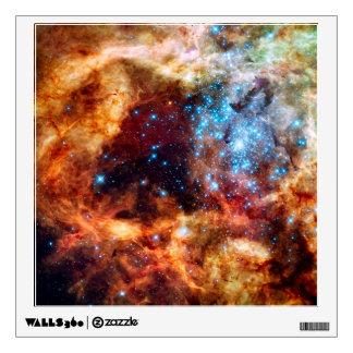 Stellar Nursery R136 Wall Decal