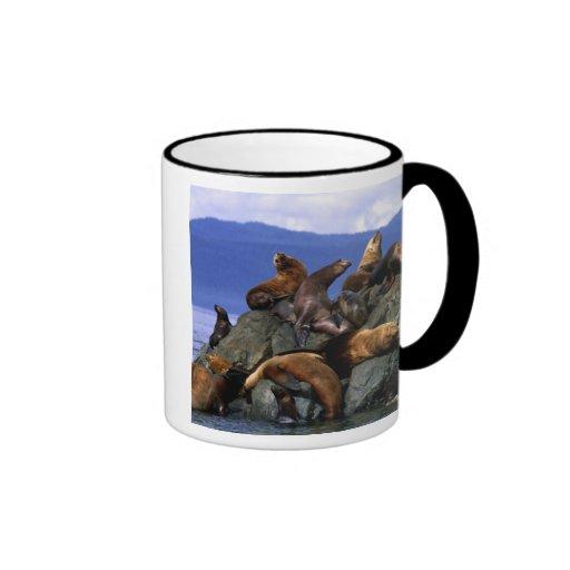 Stellar sea lions Alaska; USA Coffee Mugs