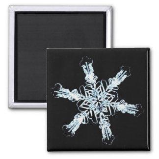 Stellar snow crystal 2 inch square magnet