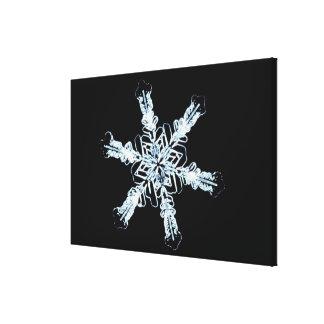 Stellar snow crystal stretched canvas print