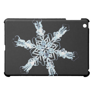 Stellar snow crystal iPad mini cases
