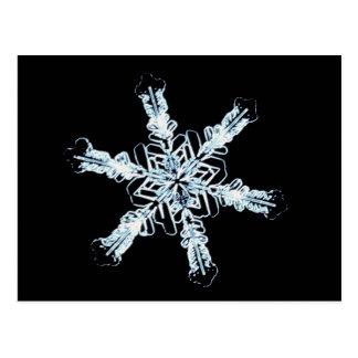 Stellar snow crystal postcard