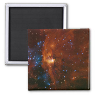 Stellar Star Birth RCW 108 NASA Magnet