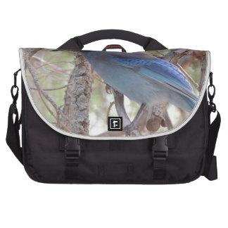 Stellars Jay Bag For Laptop