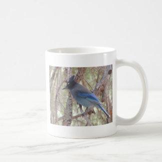 Stellars Jay Coffee Mug