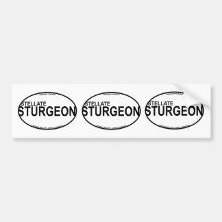 Stellate/Starry Sturgeon Euro Stickers Bumper Sticker