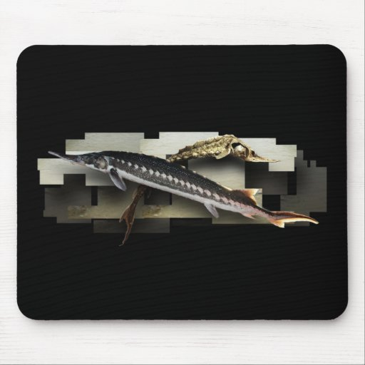 Stellate Sturgeon 3D Collage Mouse Pad