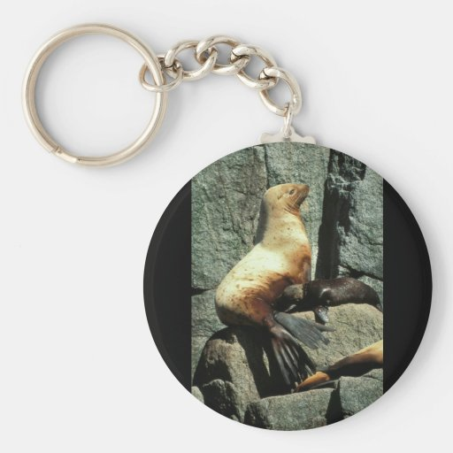 Steller Sea Lion and Pup Basic Round Button Keychain