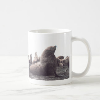 Steller Sea Lion Coffee Mug