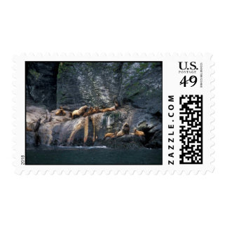 Steller Sea Lion Haulout in the Aleutian Islands Stamps