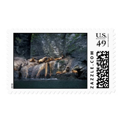 Steller Sea Lion Haulout in the Aleutian Islands Postage Stamp