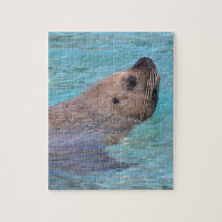 Steller Sea Lion in water Jigsaw Puzzle