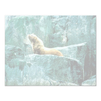 Steller Sea Lion Custom Announcements