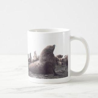 Steller Sea Lion Coffee Mug