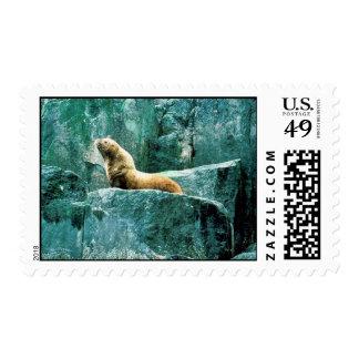 Steller Sea Lion Postage Stamps
