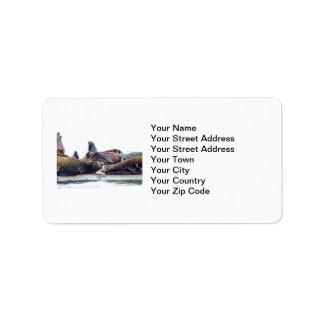 Steller Sea Lions Address Label