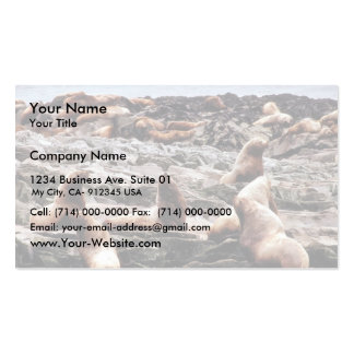 Steller Sea Lions at Haulout Double-Sided Standard Business Cards (Pack Of 100)