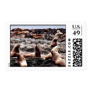 Steller Sea Lions at Haulout Postage Stamps
