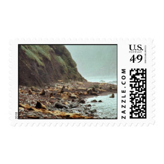 Steller Sea Lions at Haulout Stamps