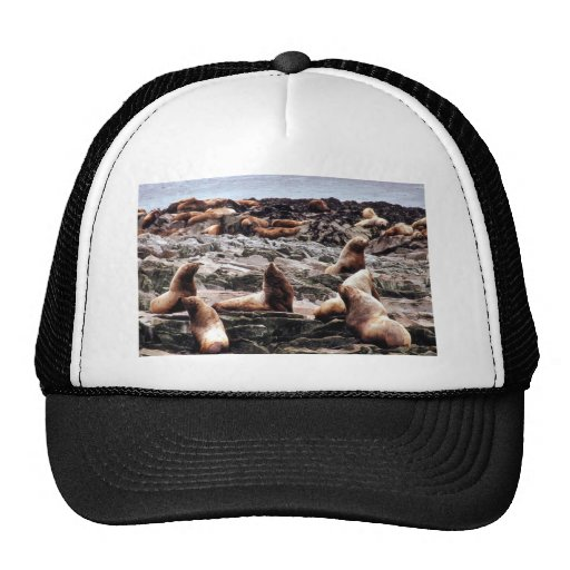 Steller Sea Lions at Haulout Trucker Hat