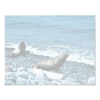 Steller Sea Lions Custom Invites