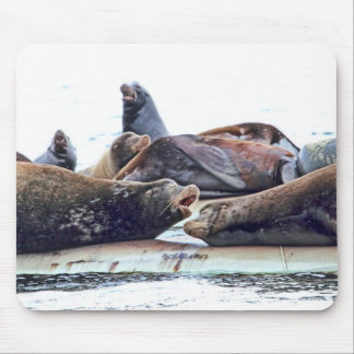 Steller Sea Lions Mouse Pads