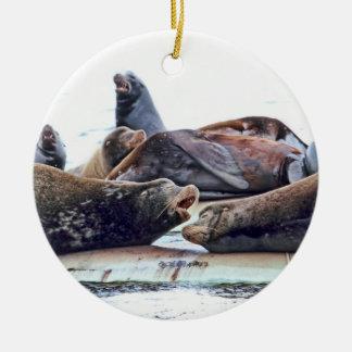 Steller Sea Lions Christmas Tree Ornament
