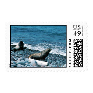 Steller Sea Lions Stamps
