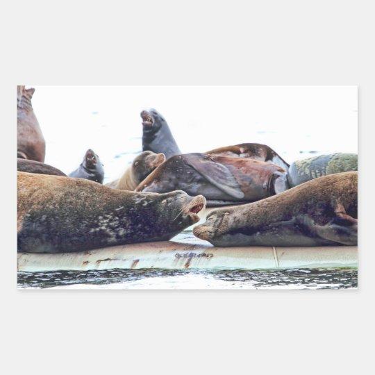Steller Sea Lions Rectangular Sticker