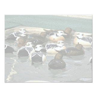 Steller's Eider Males and Females Personalized Invites