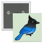 Steller's Jay Button