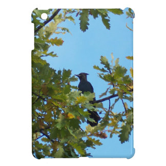 Steller's Jay in Oak Tree Cover For The iPad Mini