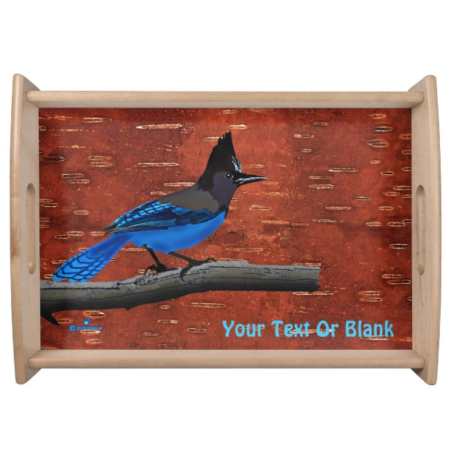 Steller's Jay On Inner Birch Bark
