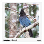 Steller's Jay Room Graphic
