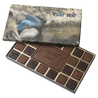 Steller's Jay 45 Piece Box Of Chocolates