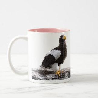Steller's sea eagle Two-Tone coffee mug