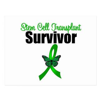 Stem Cell Transplant Survivor Butterfly Ribbon Post Card